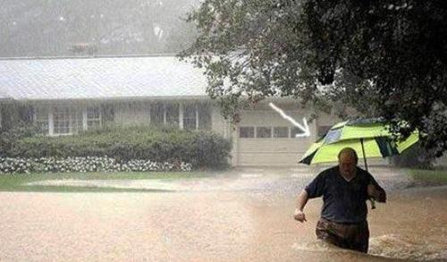 Rain Man-500.jpg