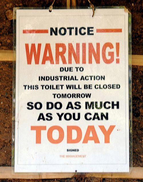 Toilet-500.jpg