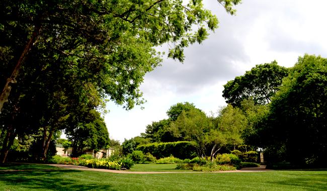 Dallas Arboretum Landscape - 650.jpg