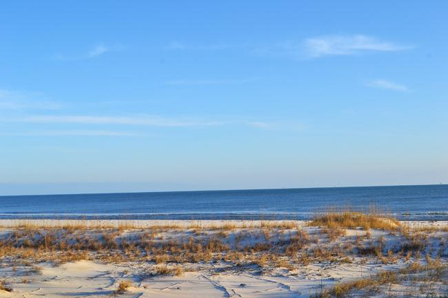Groundhog Beach-650.jpg