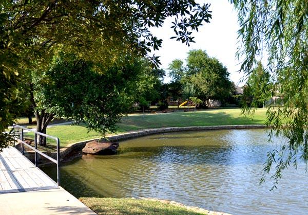 Pond - 600.jpg
