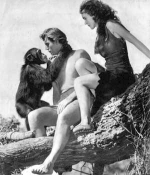 Tarzan-Jane-Cheetah - 300.jpg