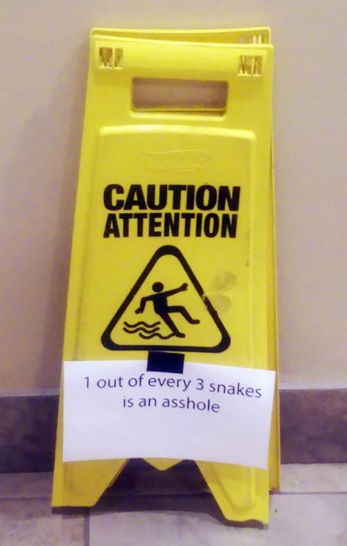 5-16 - Snakes-500.jpg